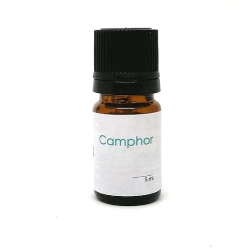 Pure camphor essential oil