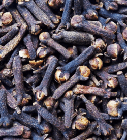 Pure Clove Essential Oil