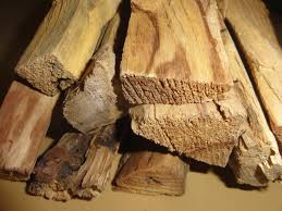 Palo Santo Essential Oil Wood